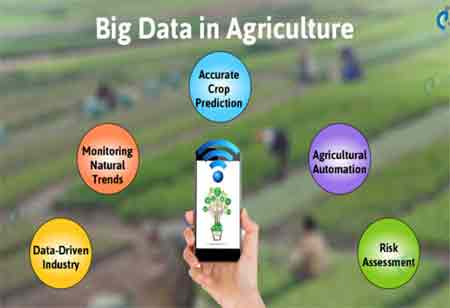 How Big Data is Revolutionizing the Agricultural Sector