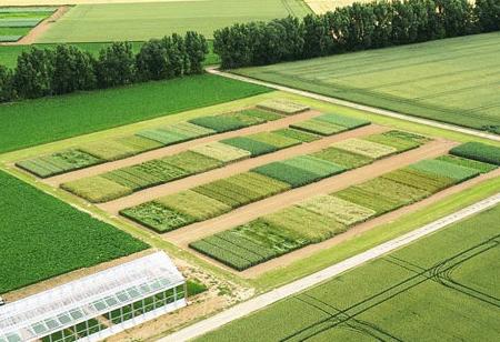 GrowerIQ Develops World's First Biotic Sensor for Crop Loss Prevention