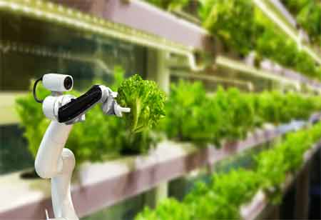 Technology Trends that can Transform Agriculture